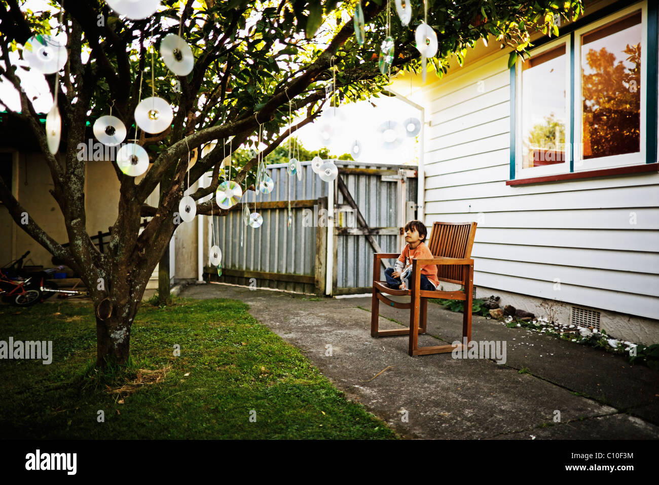 Seven year old boy watches bird-scarer discs hung from fruit tree - Stock Image