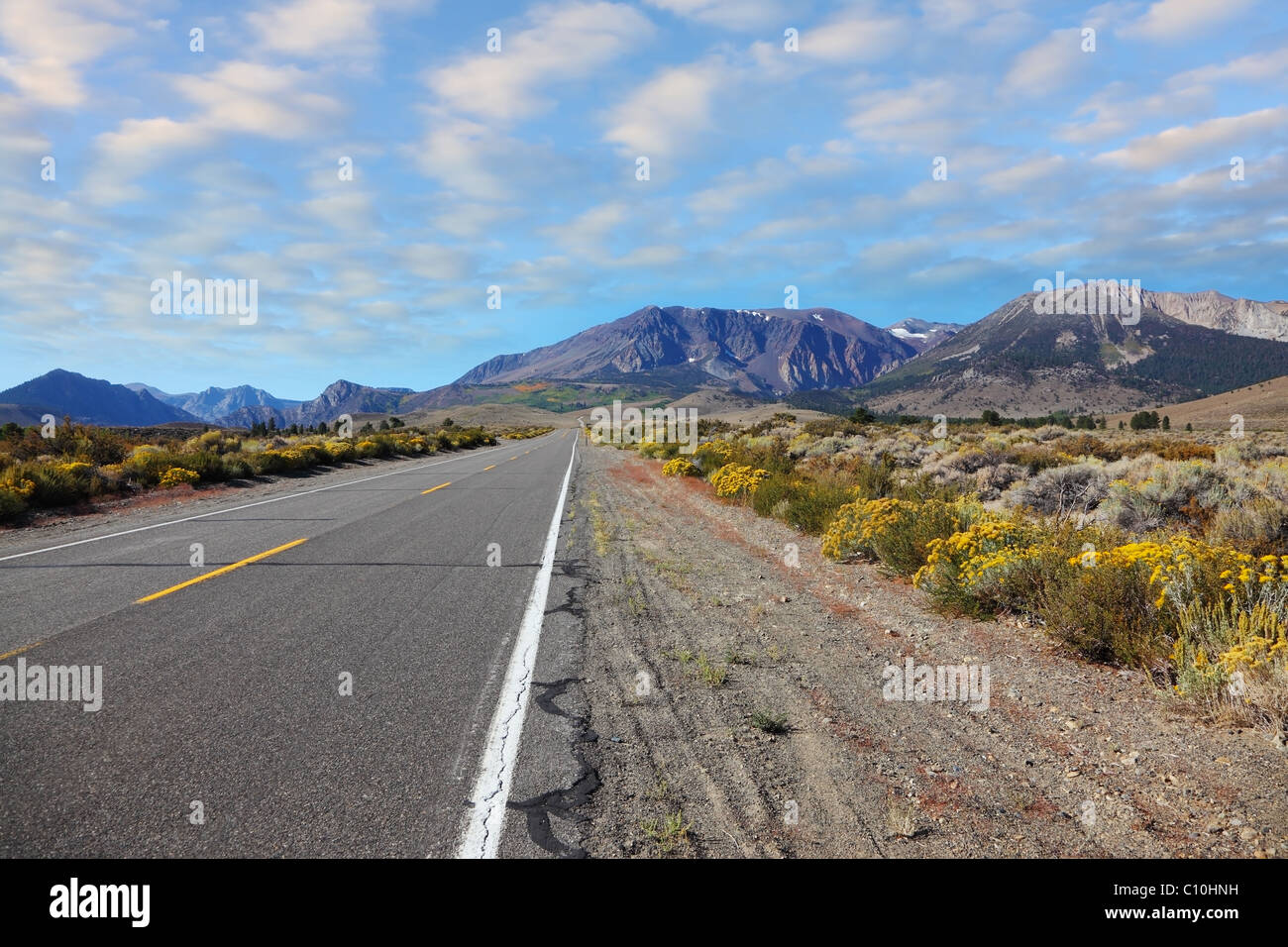 The road goes into the distance. - Stock Image