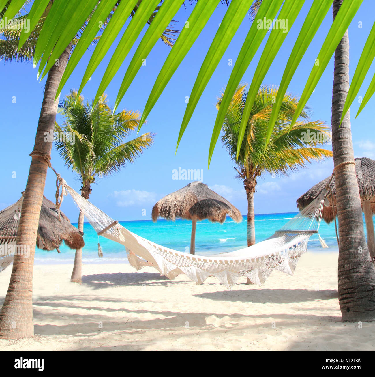 Caribbean beach hammock and palm trees in Mayan Riviera Mexico - Stock Image