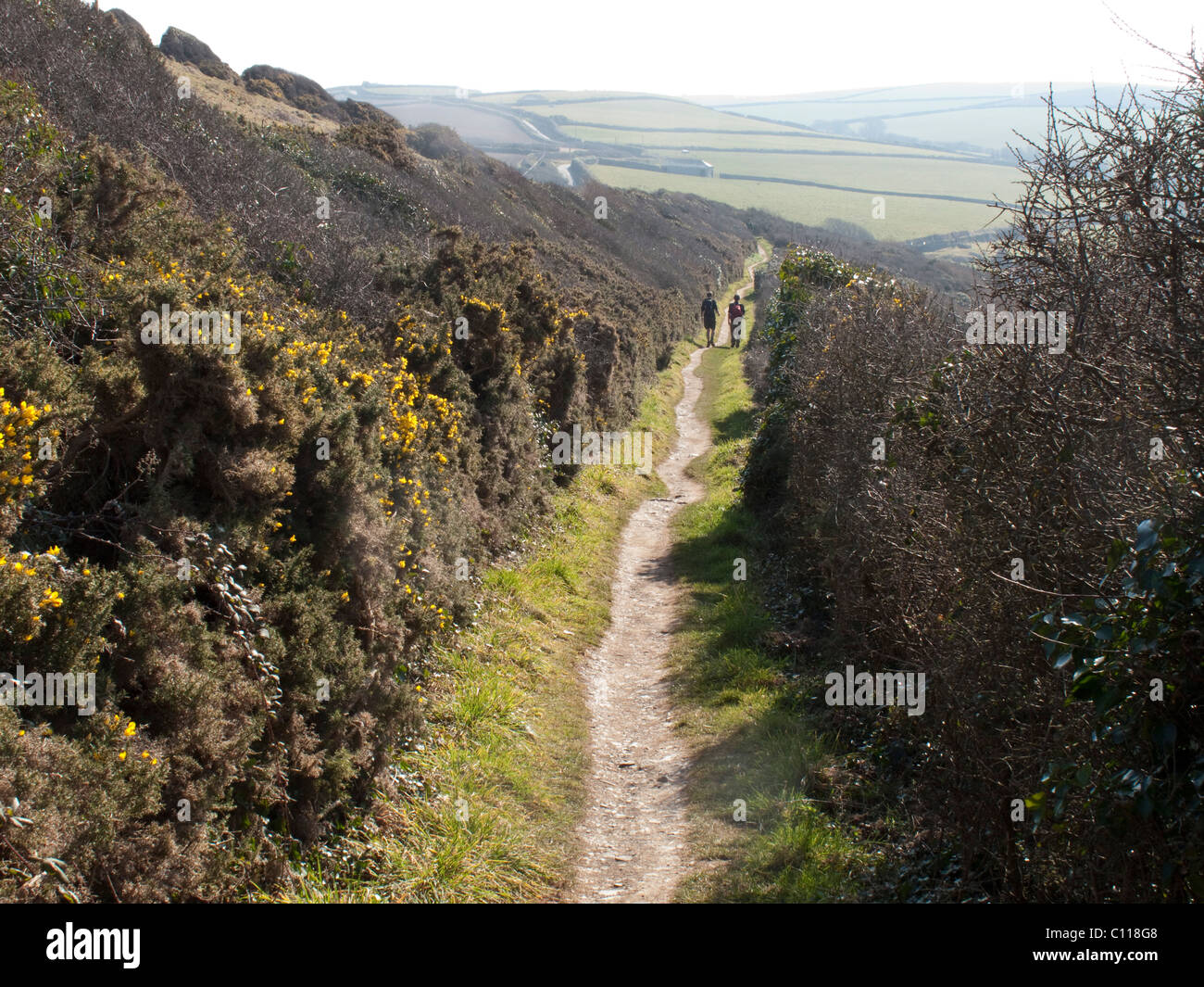 Walkers on the South West Coast Path - Stock Image