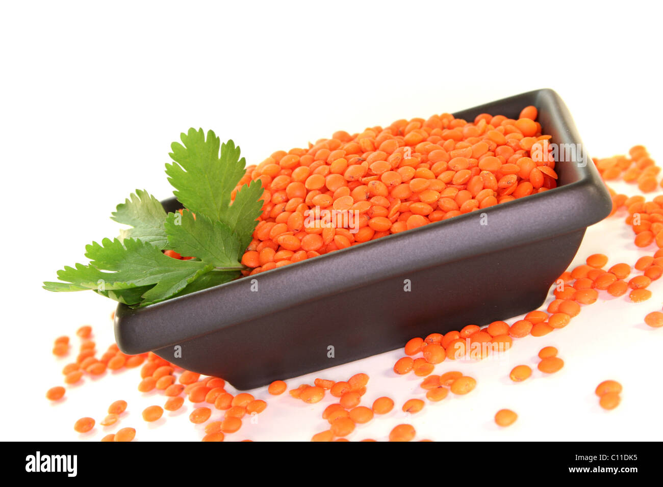 dried red lentils with coriander on a white background Stock Photo