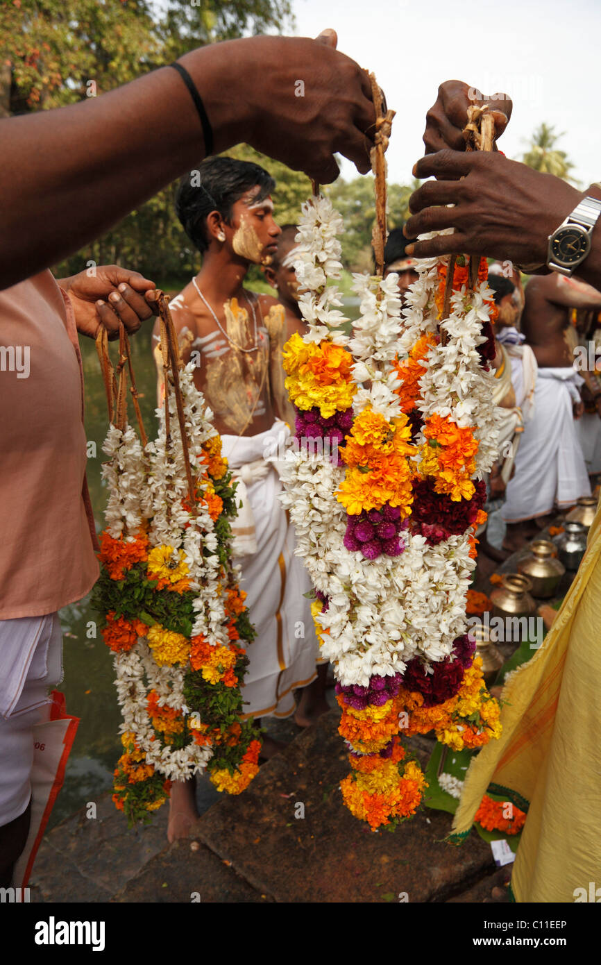 Flower garlands, Thaipusam festival in Tenkasi, Tamil Nadu, Tamilnadu, South India, India, Asia - Stock Image