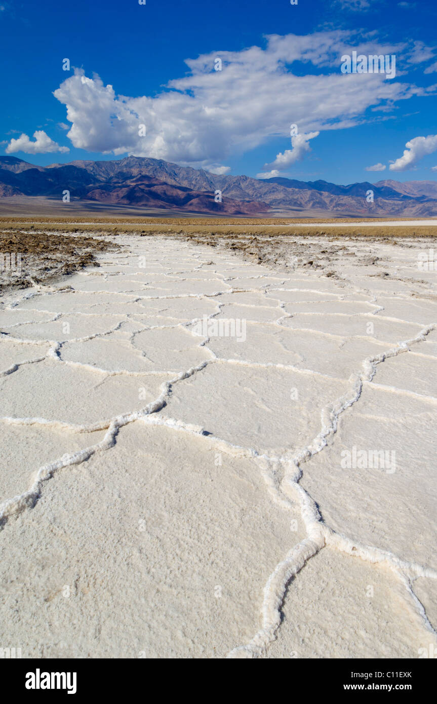 Salt pan polygons Devil's Golf course Badwater road Death Valley National Park, California, USA - Stock Image