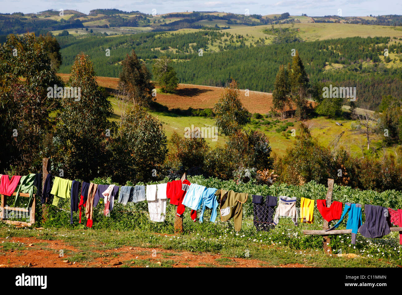 Laundry drying, Mapuche land, agricultural landscape, Bio-Bio region, Chile, South America Stock Photo