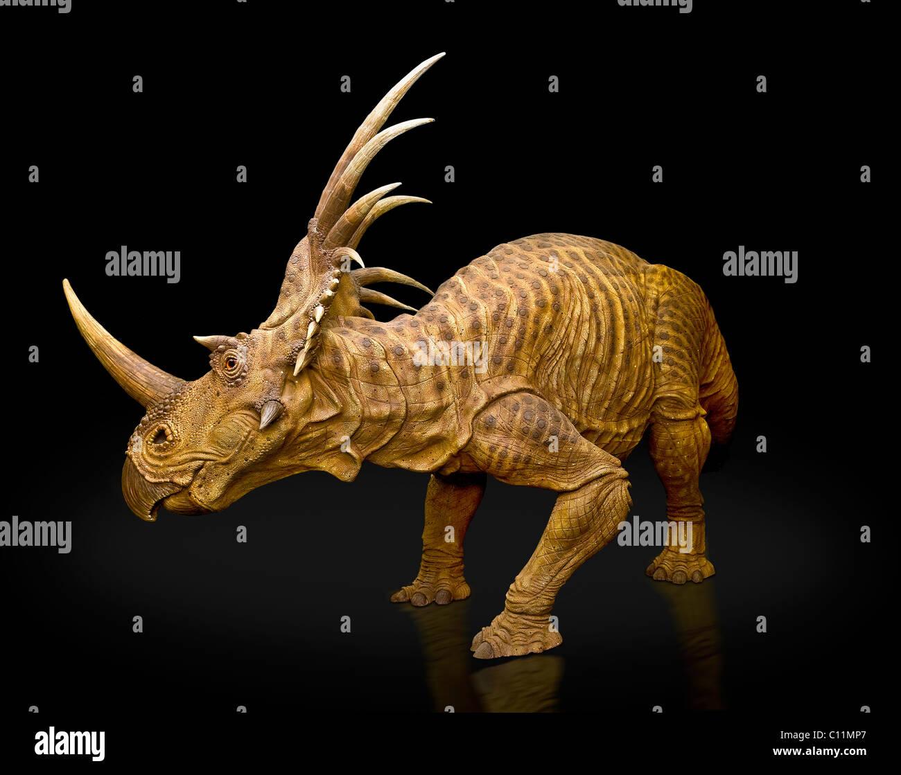 Triceratops mesozoic era dinosaur recreation - Stock Image