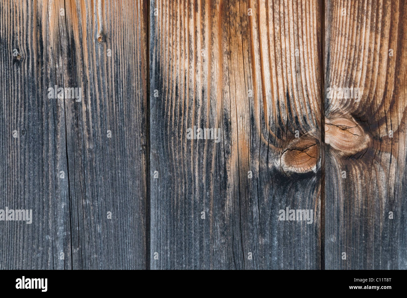 Detail, wooden partition, knots on weathered wood, background - Stock Image