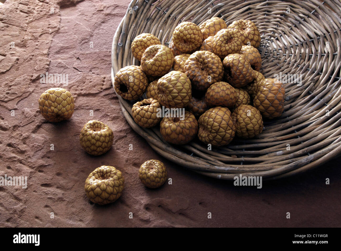 Dried fruit of Salak (Salacca), tipped from a wicker plate on sandstone - Stock Image