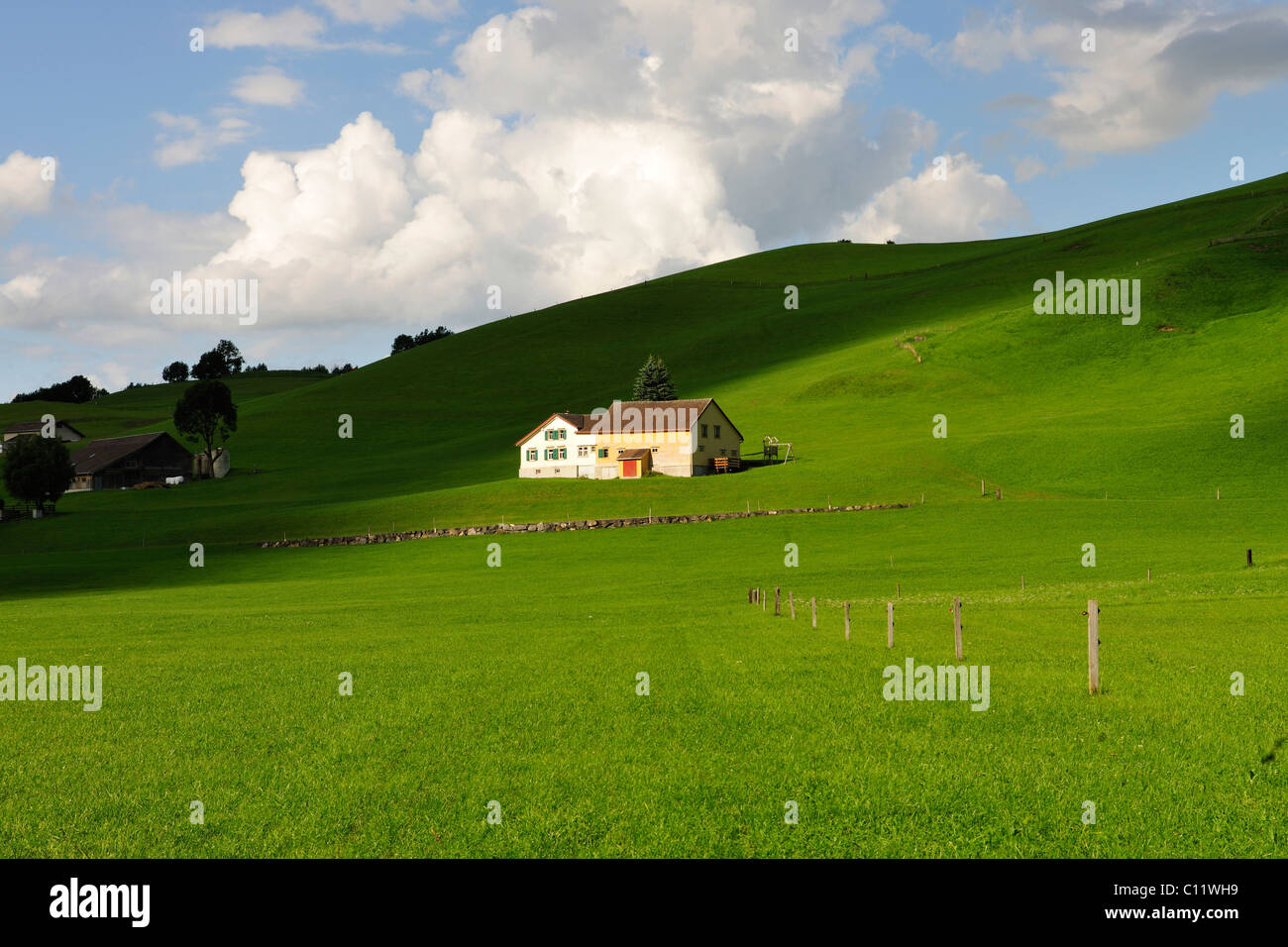 Farmhouse in the midst of green pastures, canton of Appenzell, Switzerland, Europe - Stock Image