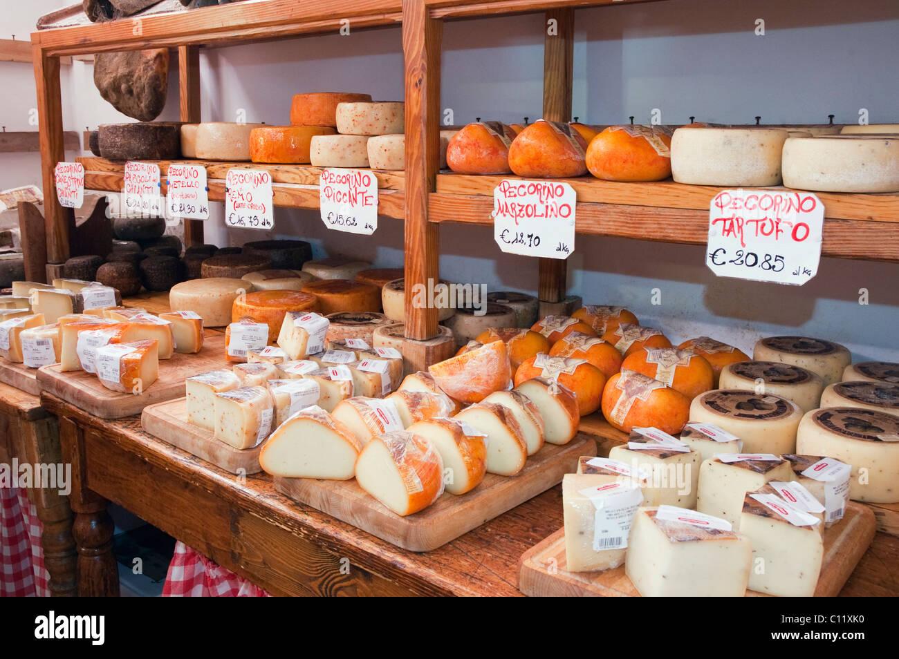Pecorino cheese in a delicatessen shop, Norcineria Falorni, Greve, Chianti, Tuscany, Italy, Europe - Stock Image