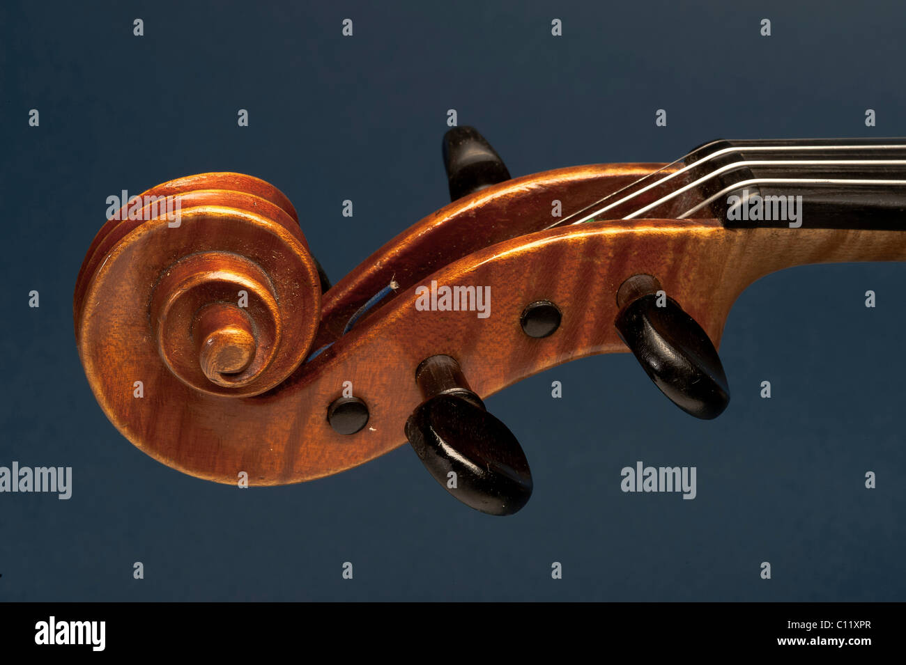 Scroll with a tuning peg, violin - Stock Image
