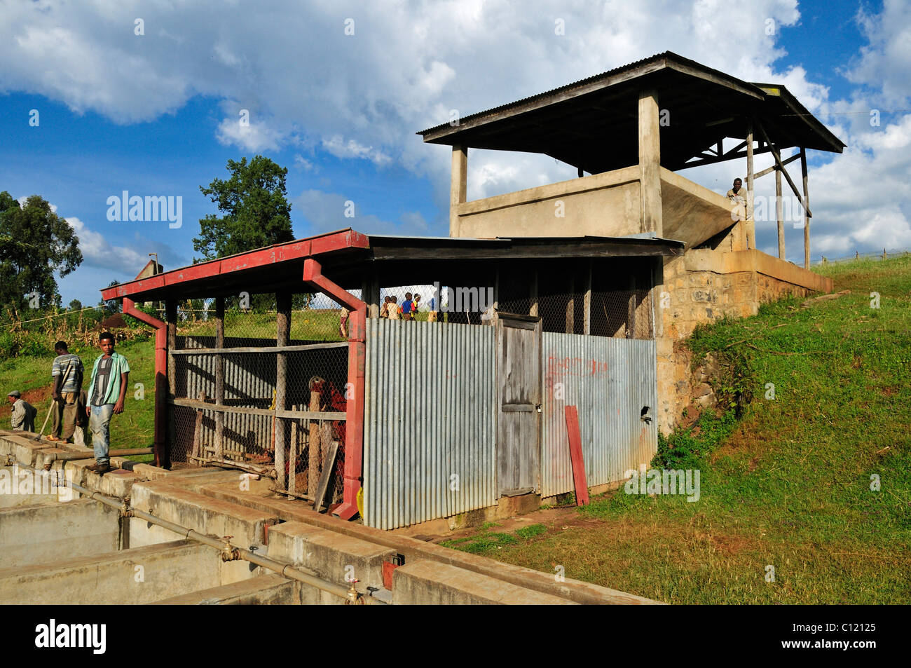 Cleaning and processing facility for coffee beans, Jimma, Kaffa Region, Oromiya, Ethiopia, Africa - Stock Image