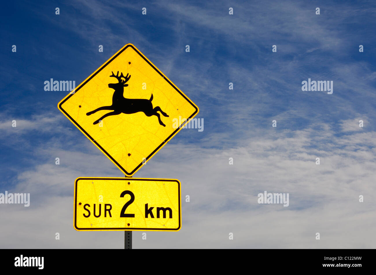Traffic sign, beware of moose, in French, Quebec, Canada - Stock Image