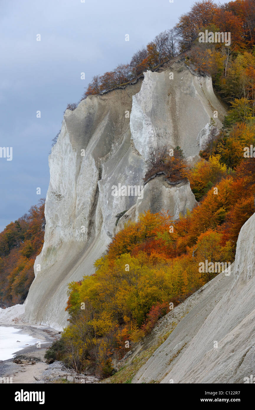 Autumn mood, chalk cliffs and the Baltic Sea, Moensklint, Moen Island, Denmark, Scandinavia, Europe Stock Photo