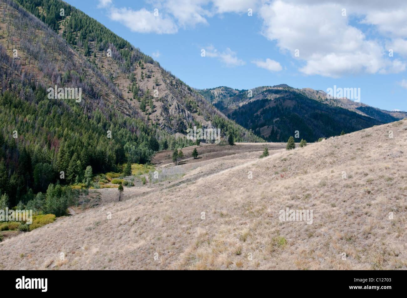 adam gulch loop walk,sun valley,world famous ski resort,home to the