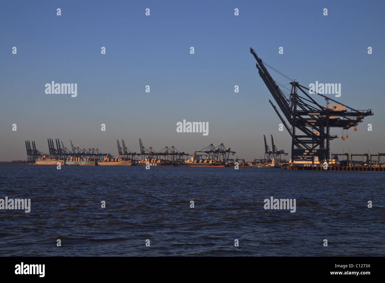 The container port at Felixstowe, Suffolk, England - Stock Image