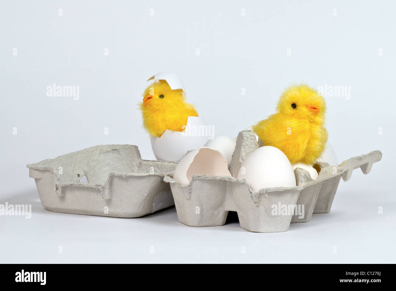 Newly hatched toy chicks in eggbox with white eggs. Hi-key - Stock Image