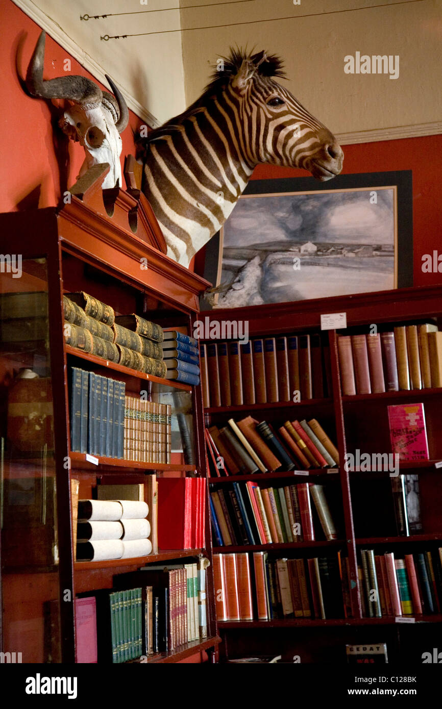 Bookstore 'Quagga' in Kalk Bay, Western Cape, South Africa, Africa - Stock Image