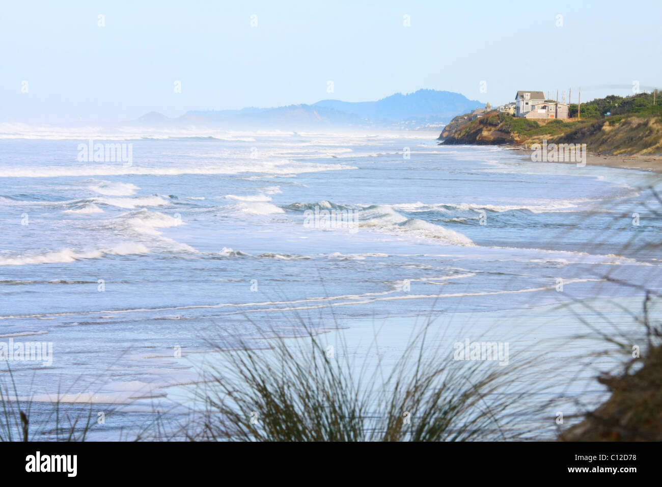 40,150.05153a Parallel seascape view of ocean waves surf beach distant house hills, foreground vegetation beach Stock Photo