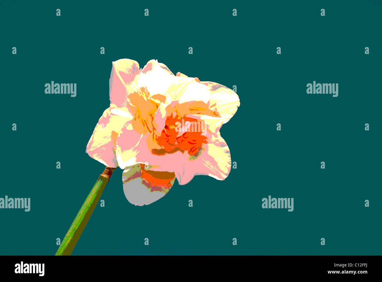 Posterized Stock Photos & Posterized Stock Images - Alamy