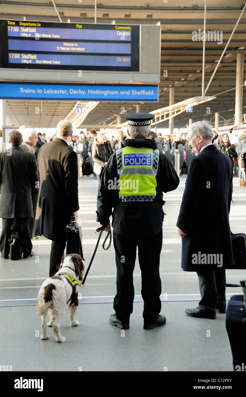 British Transport Policeman with Sniffer Dog and male traveller, St Pancras Station London England UK - Stock Image