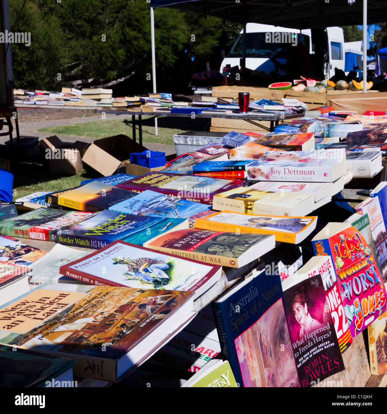 Books for sale at Car Boot market, vendors selling produce and second hand goods. - Stock Image