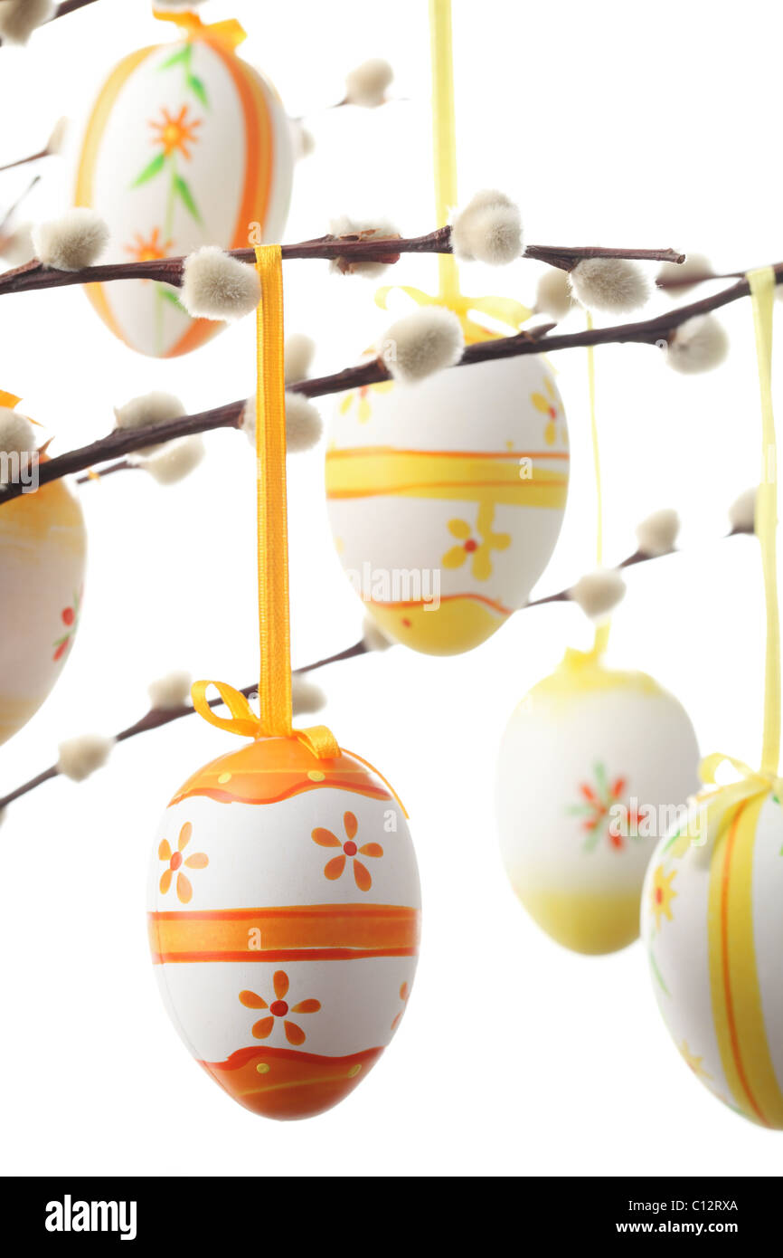 Colored Easter Eggs hanging with ribbon on branch of silver-bud willow, isolated on white. - Stock Image