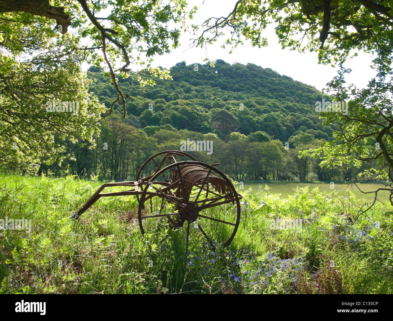 Agricultural relic abandoned in field near Castramon Wood Gatehouse of Fleet - Stock Image