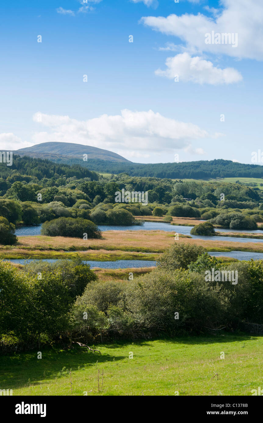 Banks of Loch Ken and the Black Craig, Galloway - Stock Image