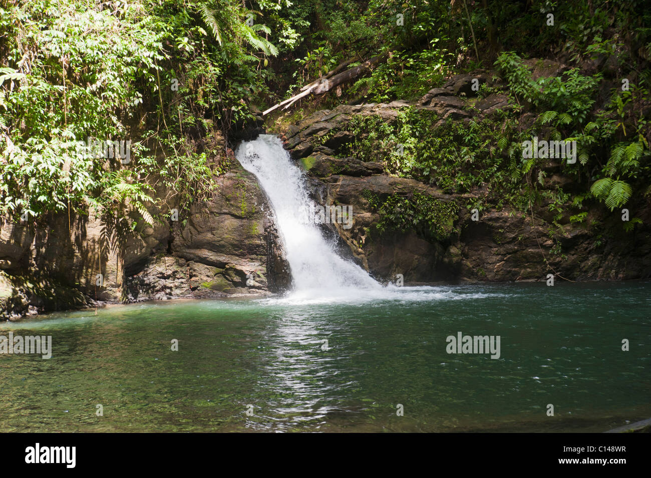 Waterfall in Amazon Rainforest Brazil South America Stock Photo