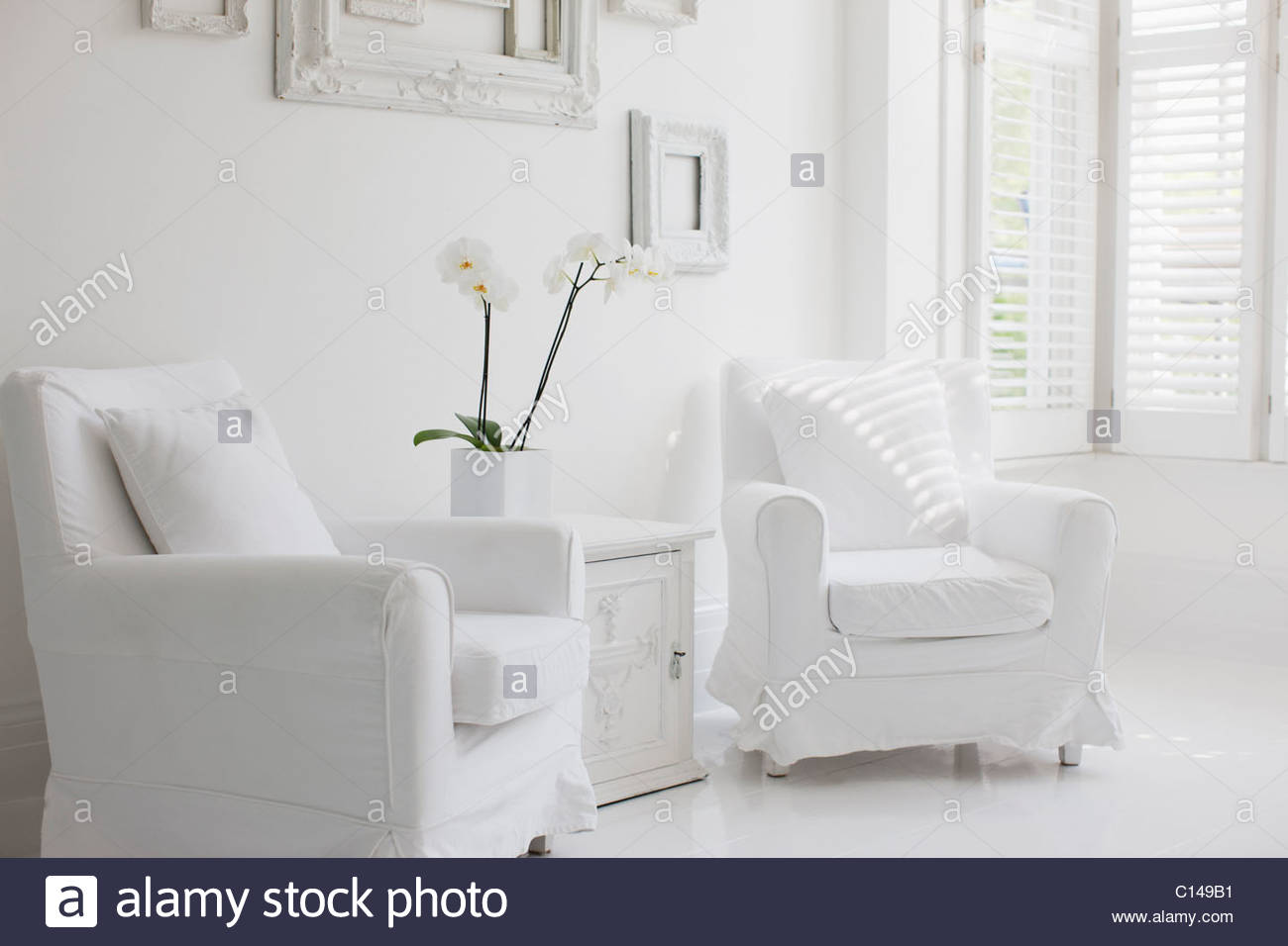 armchairs in elegant white living room stock photo 35130565 alamy