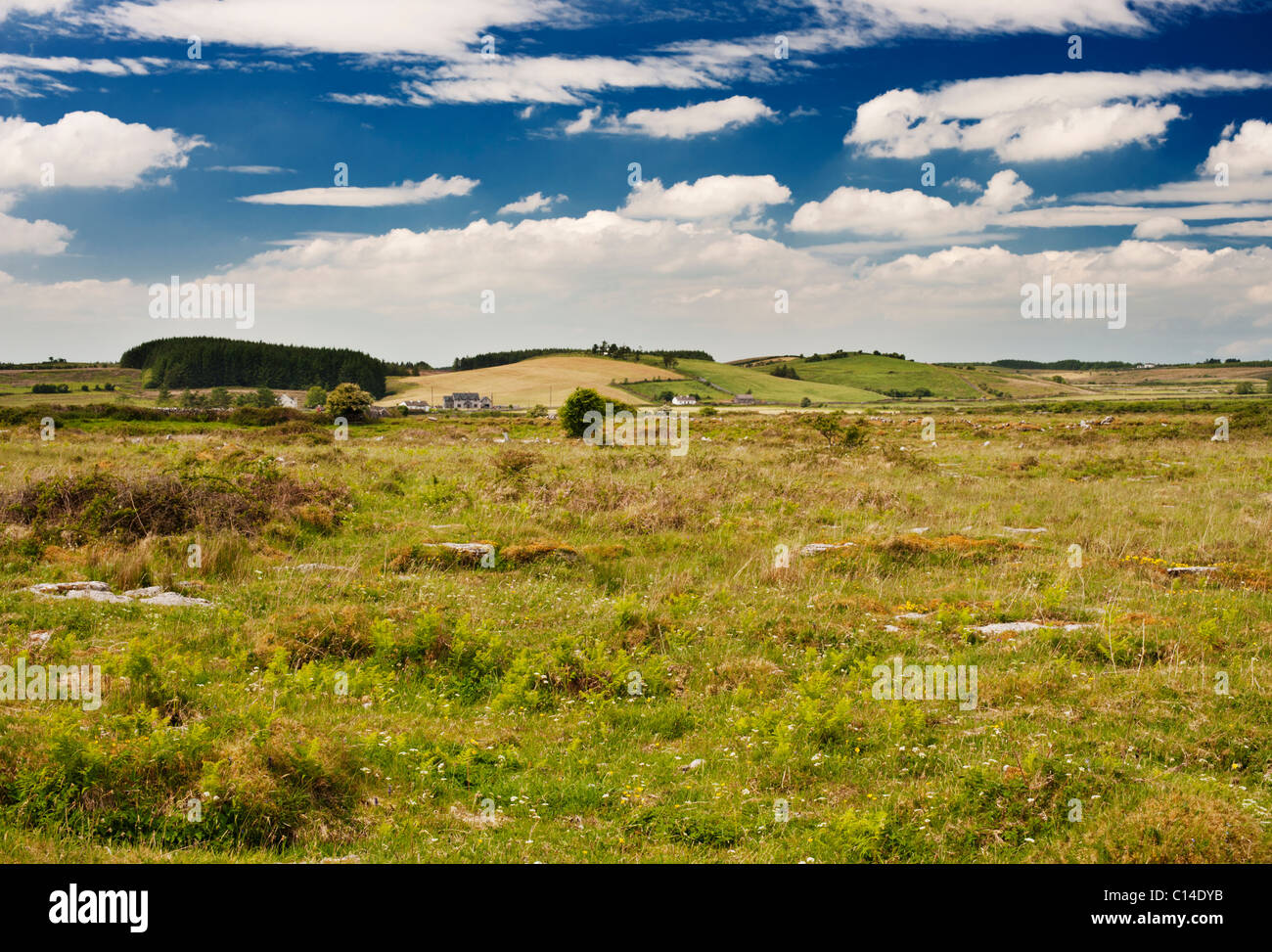 Drumlin (egg basket) topography near Kilfenora, County Clare, Ireland - Stock Image