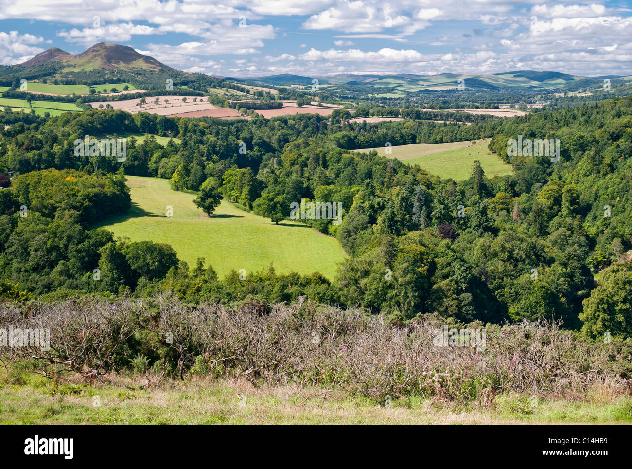 SIR WALTER SCOTT'S VIEW MELROSE SCOTLAND UNITED KINGDOM - Stock Image