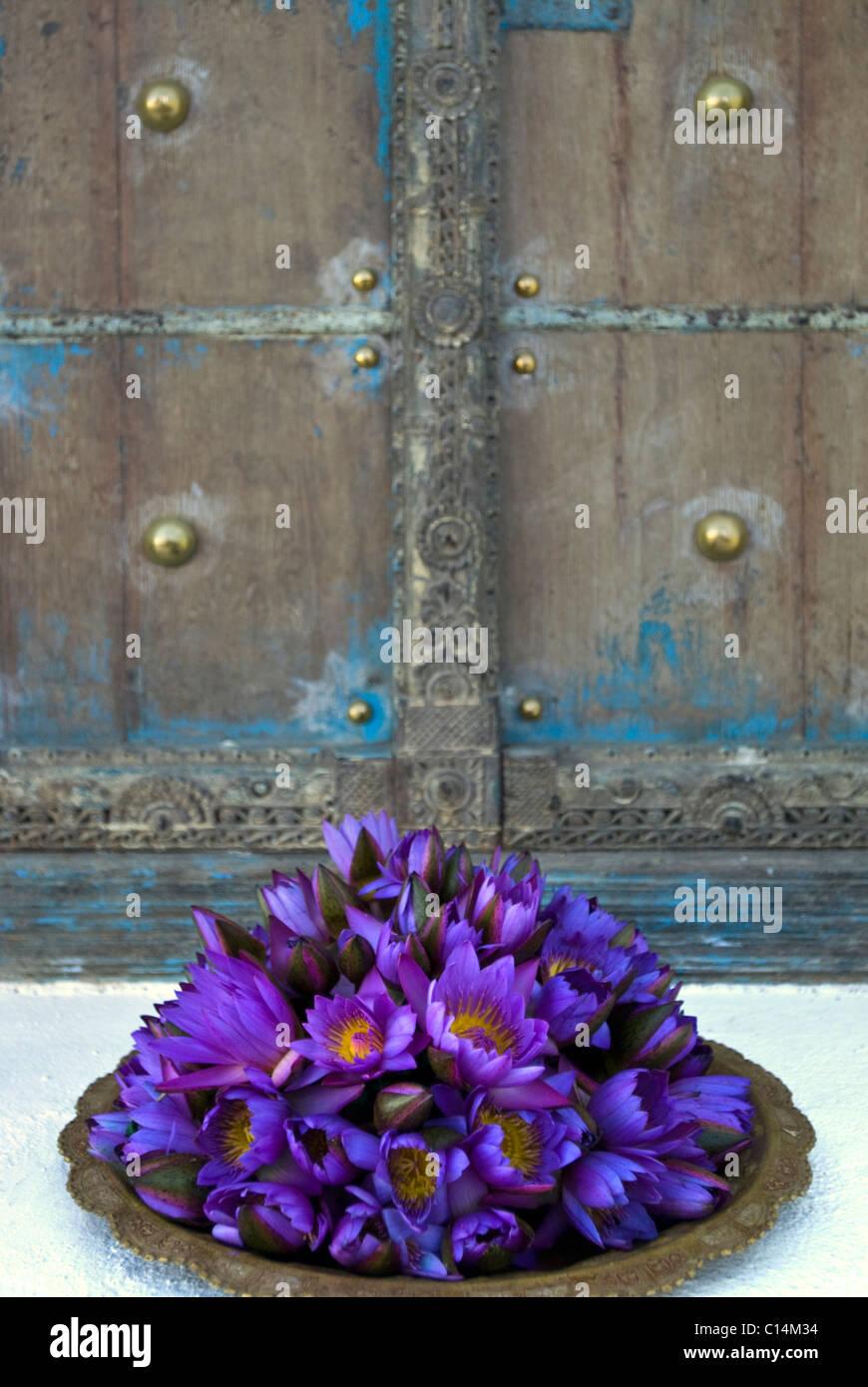 Decorative flowers, Sri Lanka - Stock Image