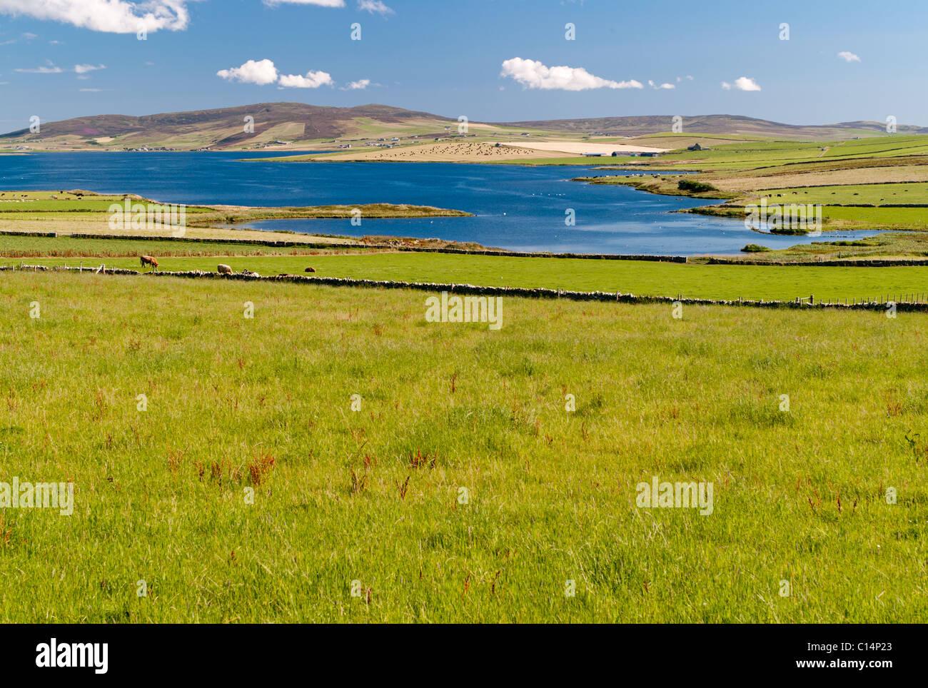 ORKNEY ISLANDS SCOTLAND UNITED KINGDOM - Stock Image