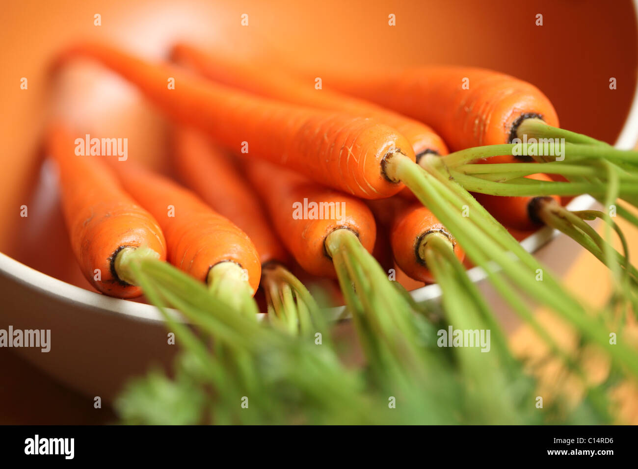 Carrots - Stock Image