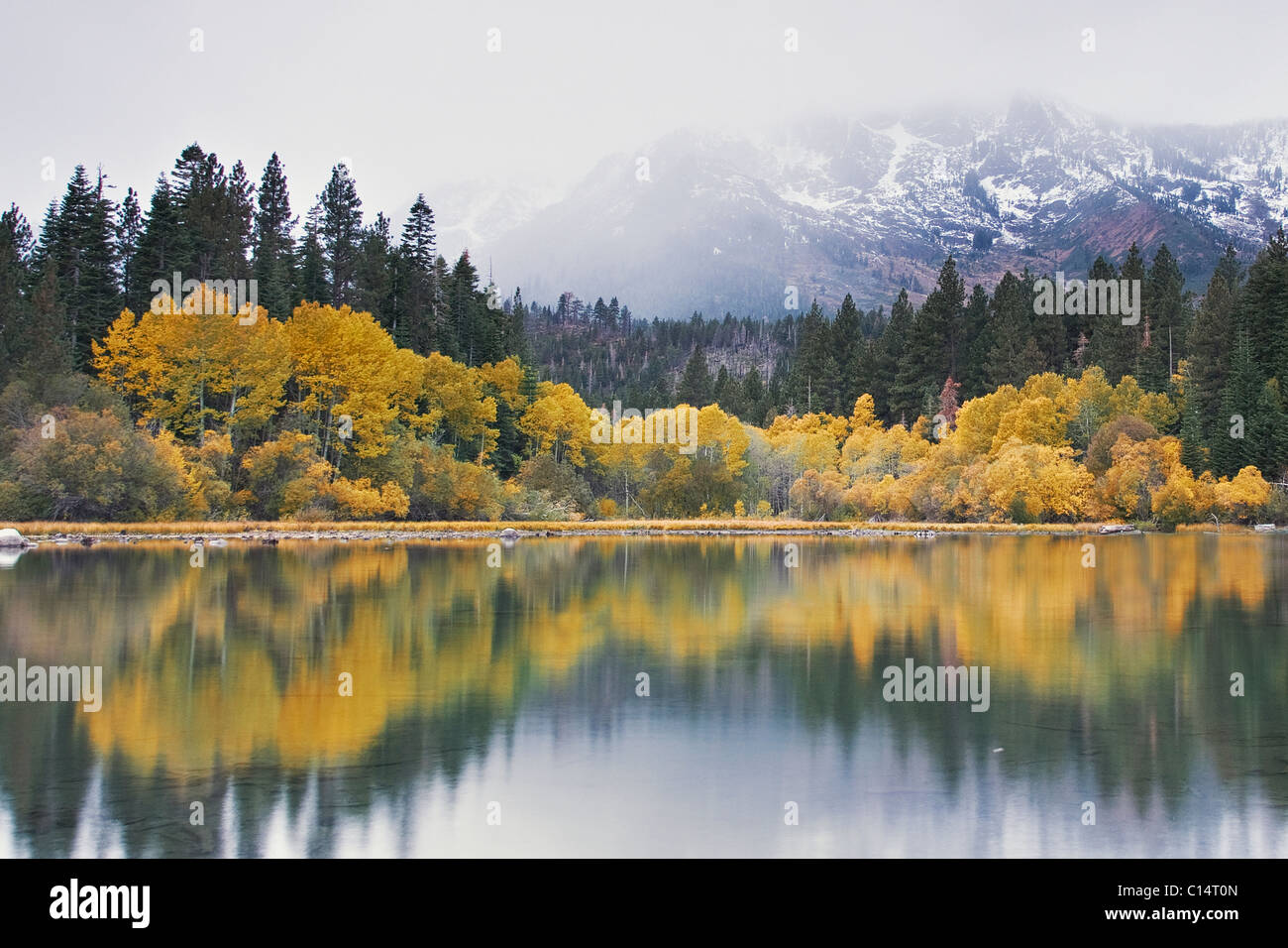 Mount Tallac with new snow and fall foliage reflecting in Fallen Leaf lake near Lake Tahoe in California - Stock Image