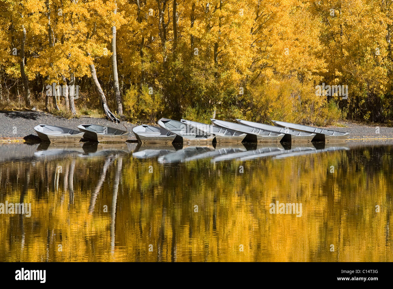 A row of fishing boats and autumn aspens trees reflecting in Silver Lake in the Sierra mountains of California - Stock Image