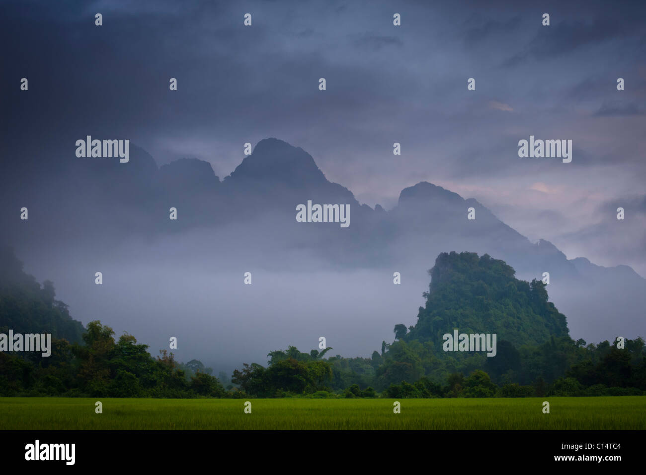 Rice paddies and mountains covered in vegetation in mist and clouds.  Vang Vieng, Laos, Asia. - Stock Image