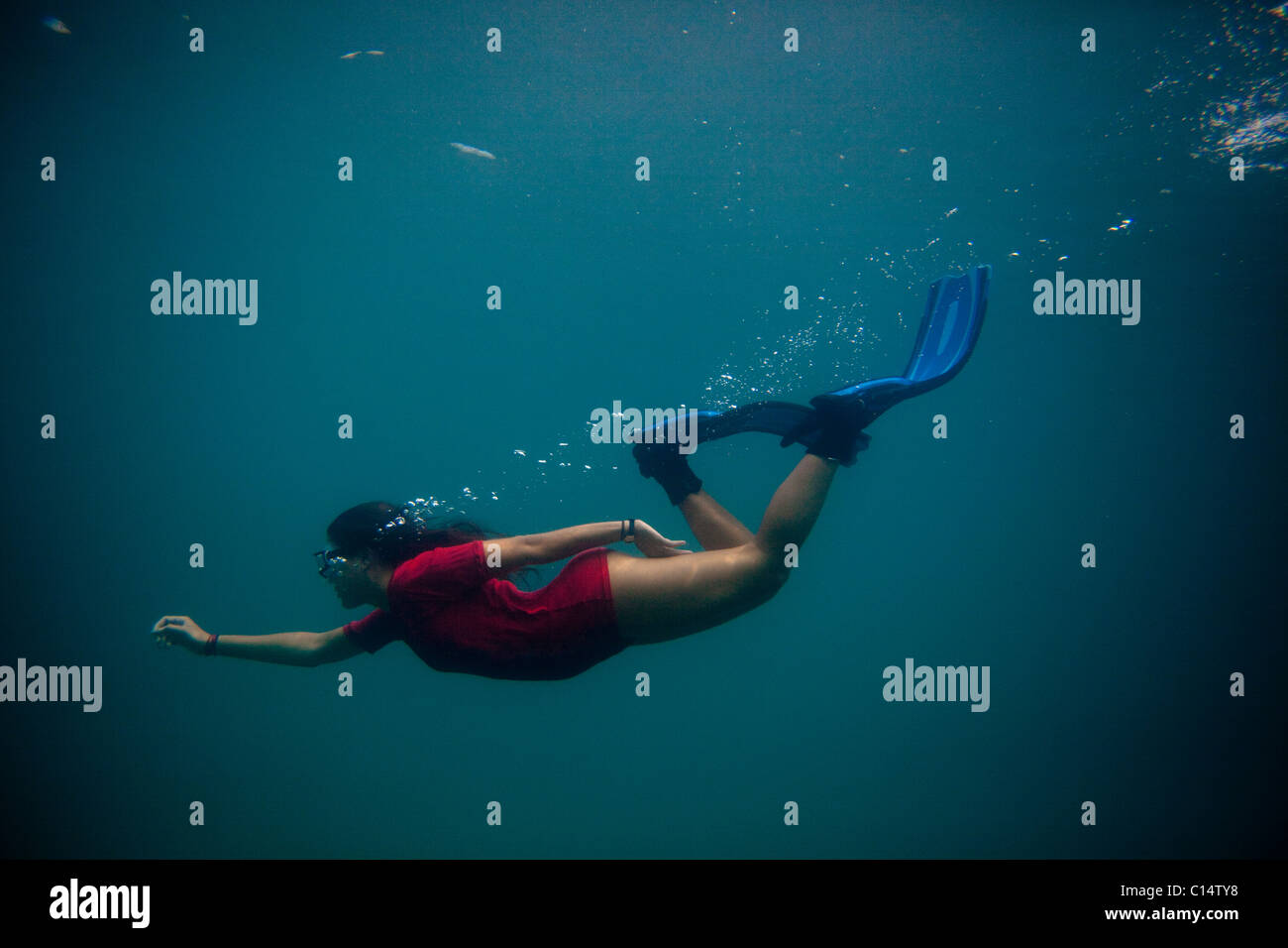 A young Hispanic woman free dives in the Caribbean Sea. - Stock Image