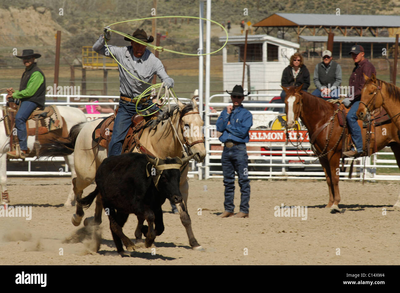 Extreme team roping