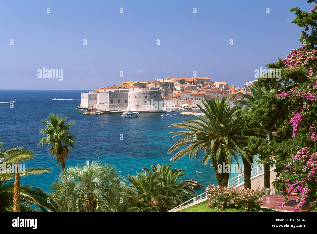 Dubrovnik, Dalmatia, Dalmatian Coast, Croatia - Stock Image