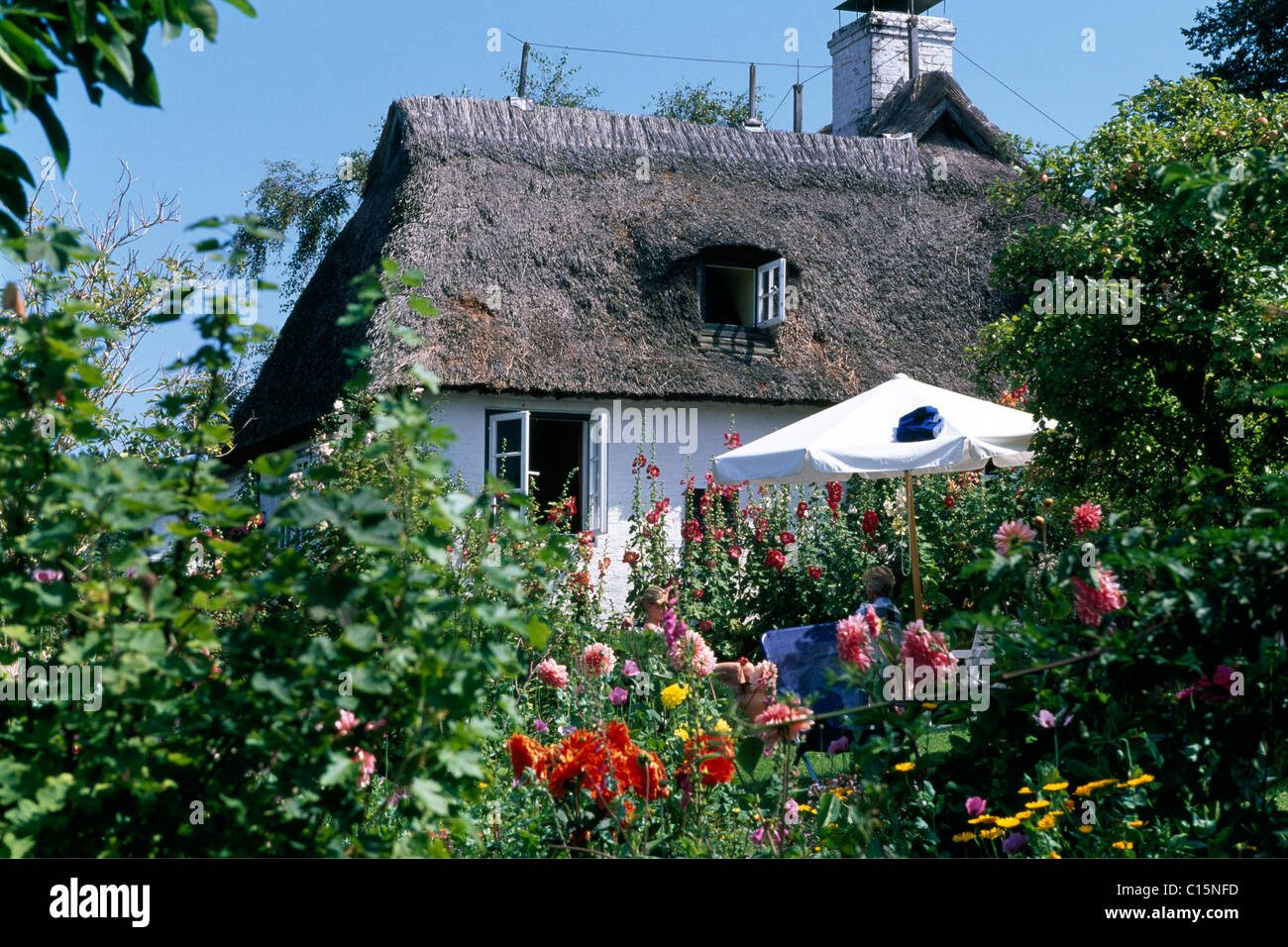 Thatched, thatch-roof house, Sieseby, Schlei, Schleswig-Holstein, Germany, Europe - Stock Image