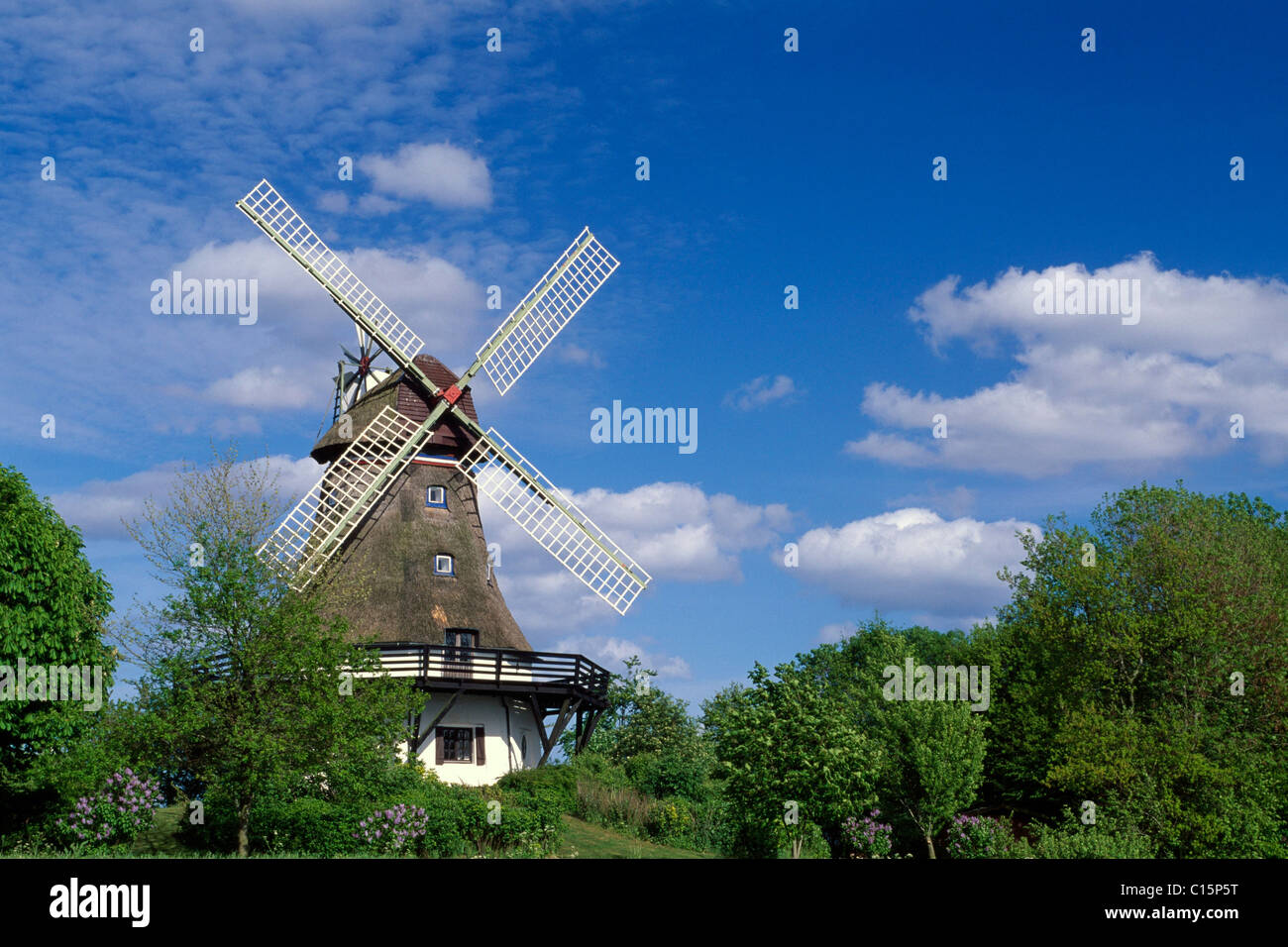 Windmill, Pommerby in the Angeln region on the Schlei River, Schleswig-Holstein, Germany, Europe - Stock Image