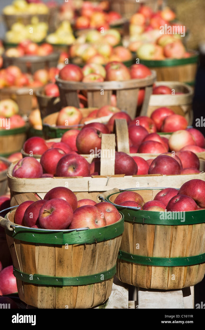 Baskets of apples for sale - Stock Image