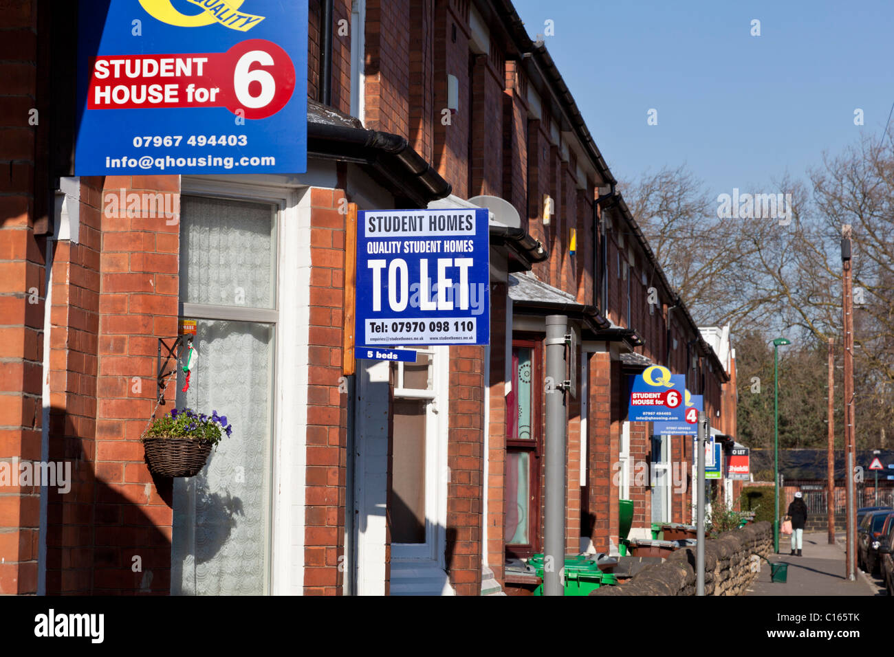 To let signs in a residential area - Stock Image