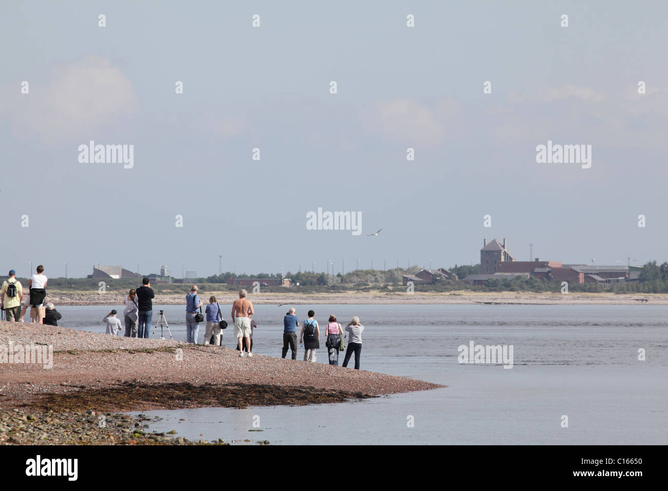 People watching for Bottle Nose Dolphins from Chanonry Point, Black Isle, Scotland, September 2010 - Stock Image