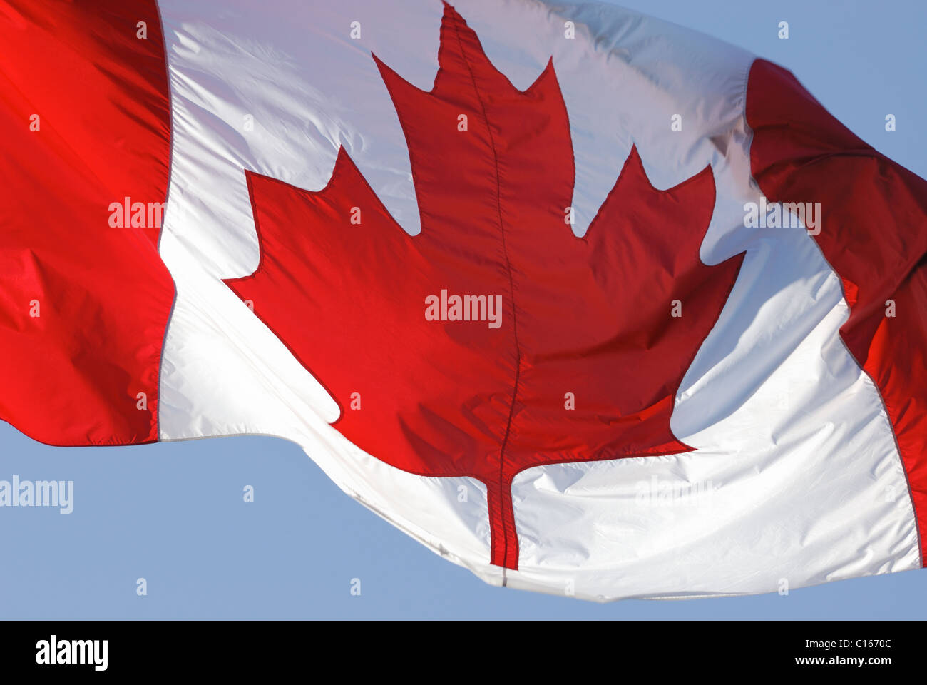 Close-up of the Canadian flag fluttering in the wind. - Stock Image