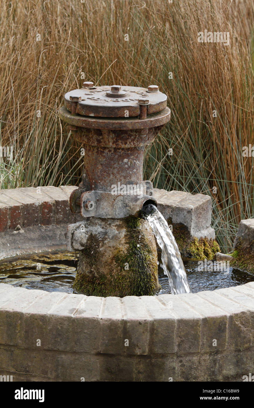 A natural spring piped up to the surface to provide drinking water in the marshes near Harty Ferry in Kent, just - Stock Image