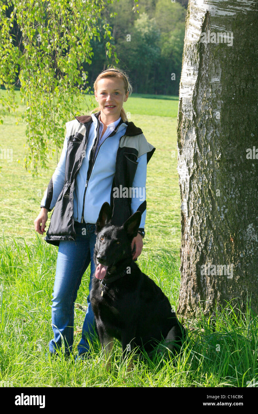 Quiero von der Bachhoehle, bi-colour German Sheperd with female dog handler - Stock Image
