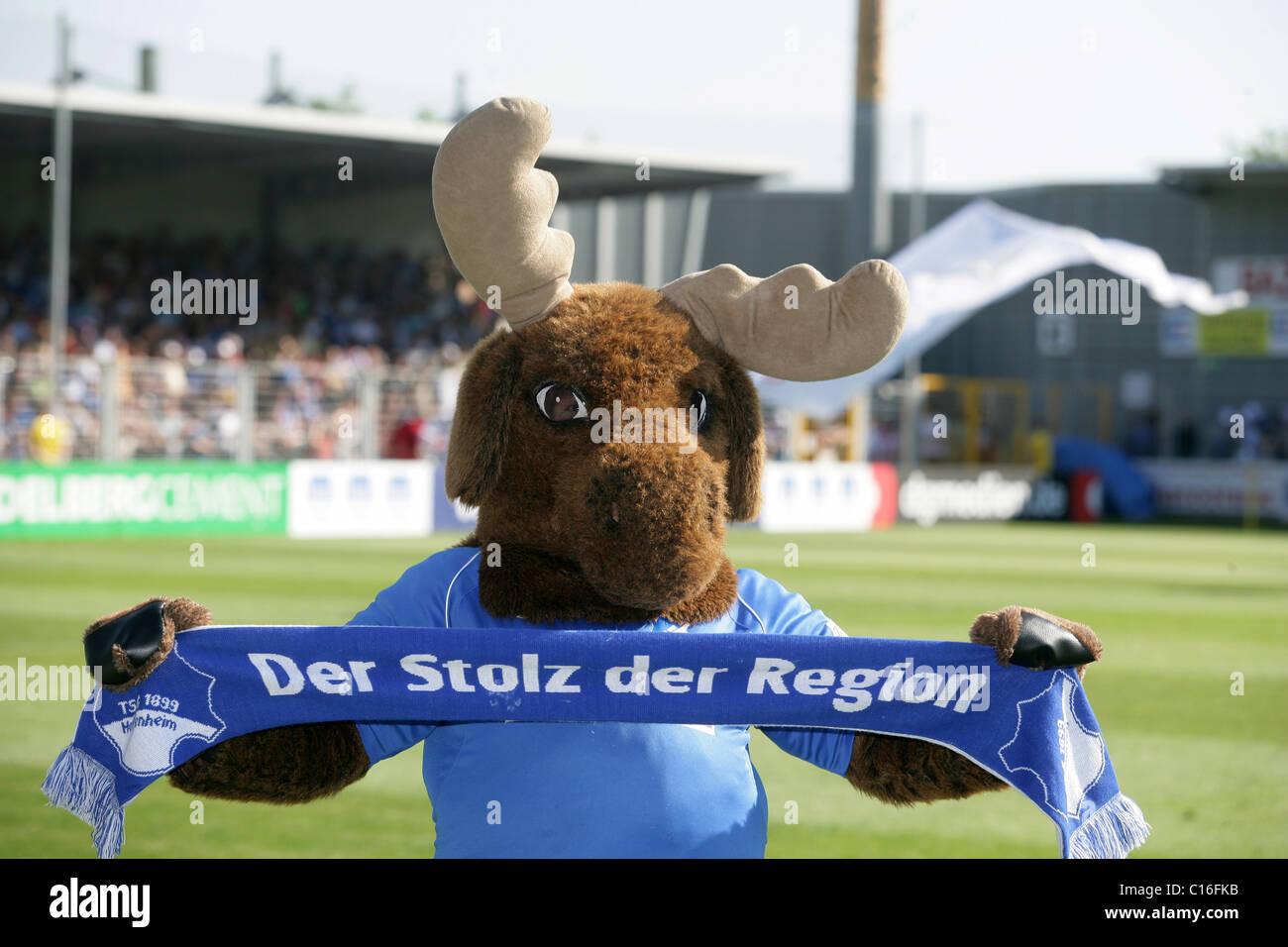 Mascot 'Hoffi' of Hoffenheim, football, Second German Football League, TSG Hoffenheim, TuS Koblenz, Dietmar - Stock Image